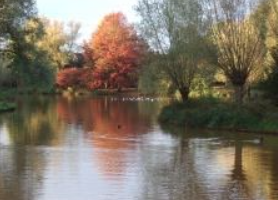 BrabantWoningUden=duurzame renovatie